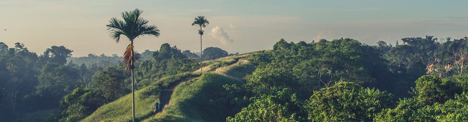 7-Day Digital Nomad Lifestyle Course